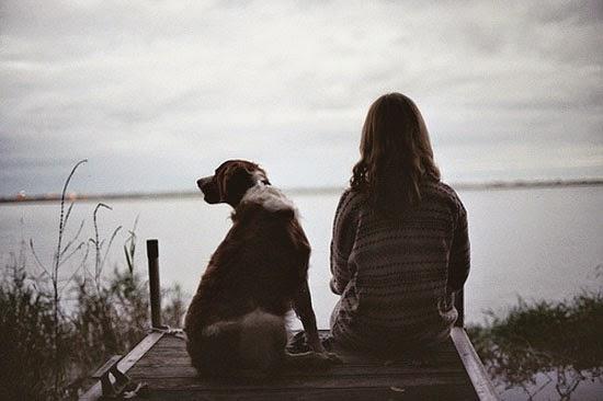 Chó và những câu chuyện để suy ngẫm-1