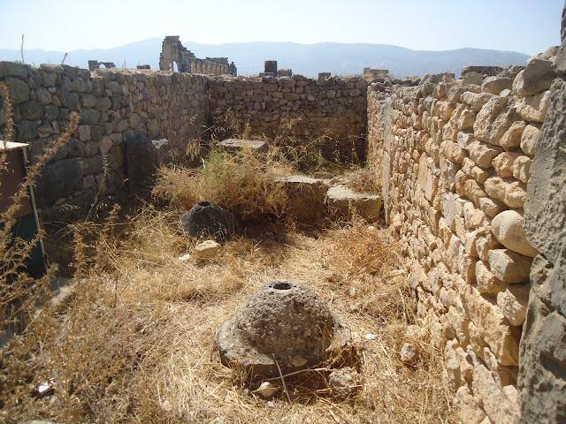 Marrocos 2011 - Página 3 DSC03667