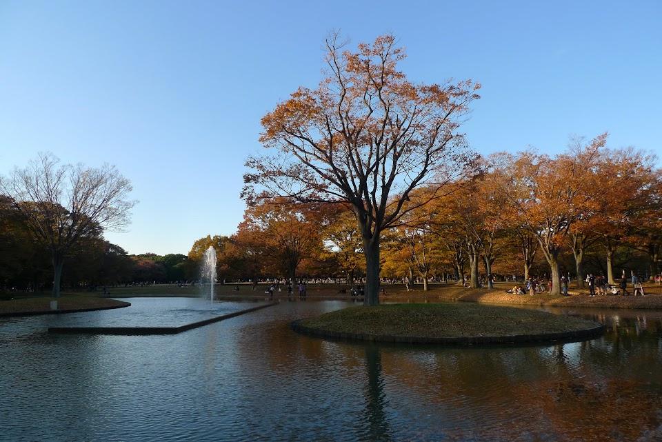 tokyo parc yoyogi
