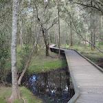 Crosslands boardwalk (71320)
