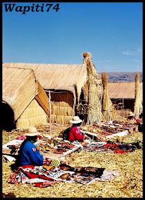 Un mois aux pays des Incas, lamas et condors (Pérou-Bolivie) - Page 2 CD2%2520%252882%2529
