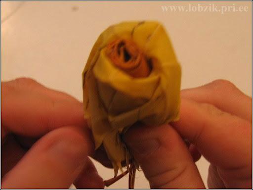bouquet%2525252520_22.jpg