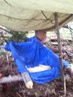 survival trip cot homemade cot