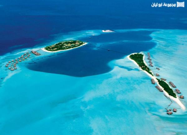 اغرب 10 : جزر في العالم Carrot-Island-600x434