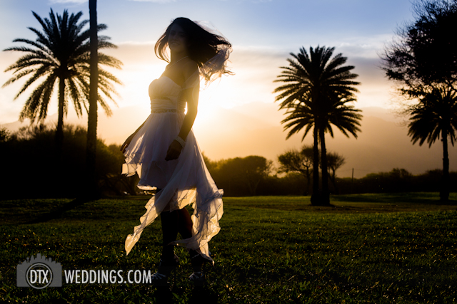 trash the dress dallas photographer