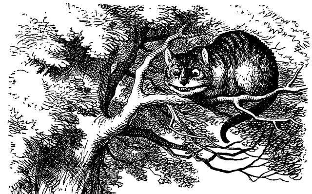 Resultado de imagem para gato alice ilustração