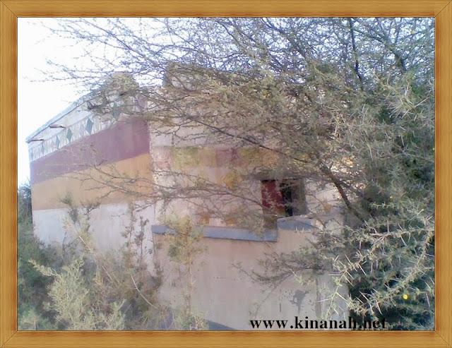 مواطن قبيلة الشقفة (الشقيفي الكناني) الماضي t8197.jpeg