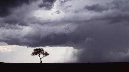 Storm Clouds Over Masai Mara, Kenya, Africa.jpg
