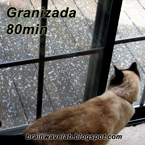 Caratula Granizada 80min
