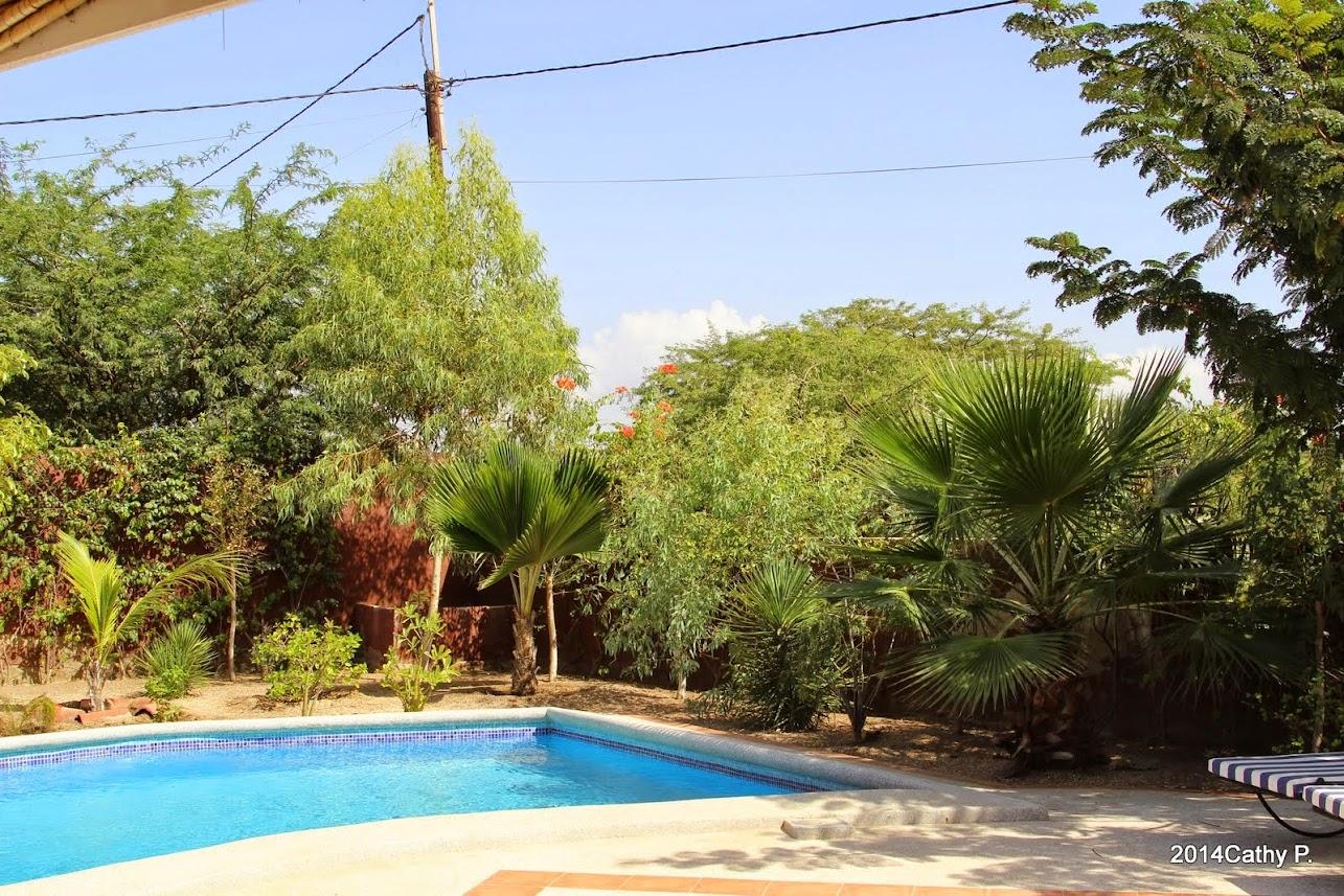 Mon jardin senegalais IMG_1671