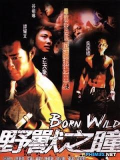 Dã Chiến Giang Hồ - Born Wild - 2001