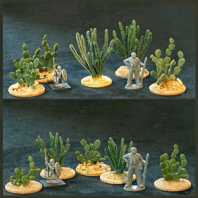 cactus Baudea