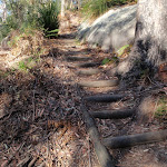 Plenty of steps where required (203104)