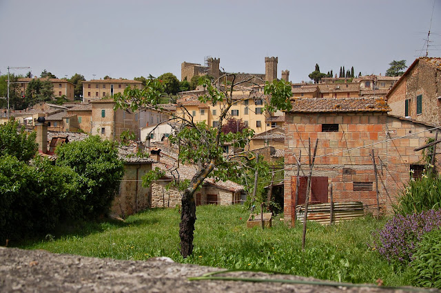 Montalcino's fortress seen from a private garden