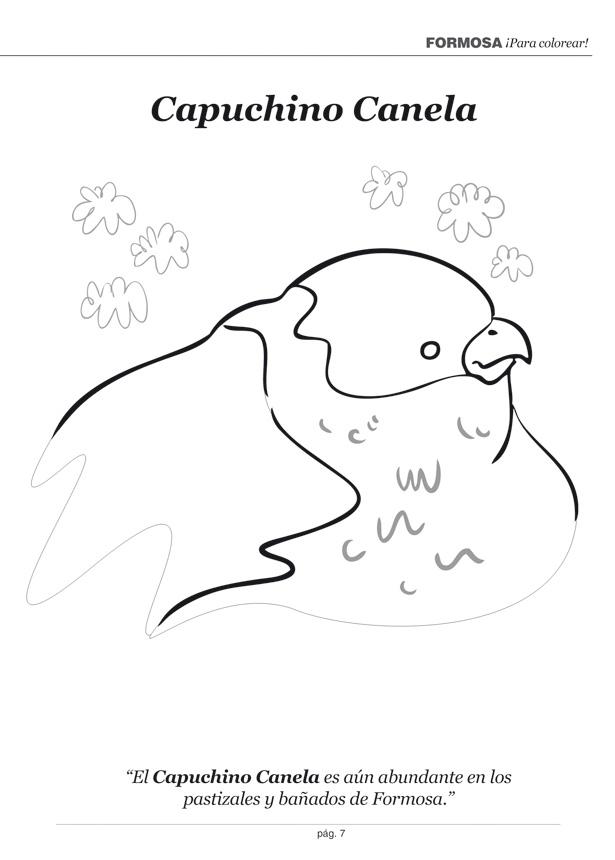 Fauna Autóctona Libro Para Colorear