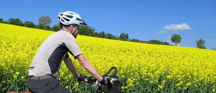 Chris on the Bike vor Rapsfeld an der Reuss auf dem schweizer Radweg 77