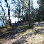 Sandy open area beside water