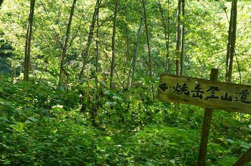 中尾高原ルート
