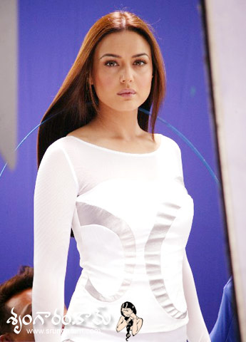 Preity Zinta part 12(21photos)  #picasa:picasa