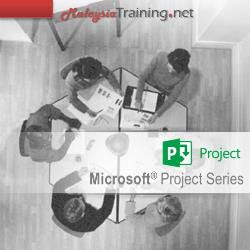Microsoft Project 2013/2016 (Beginner) Training Course