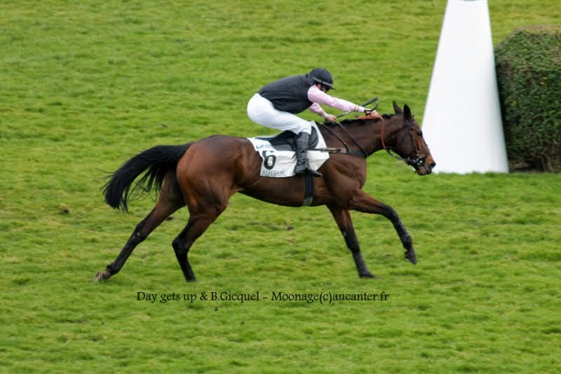 Photos Auteuil 1-03-2015 IMG_7033