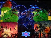 新竹燈會-節節高昇花燈