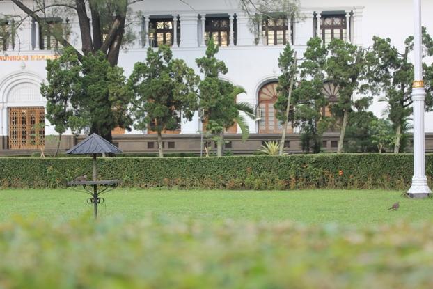 Burung di Taman Gedung Sate
