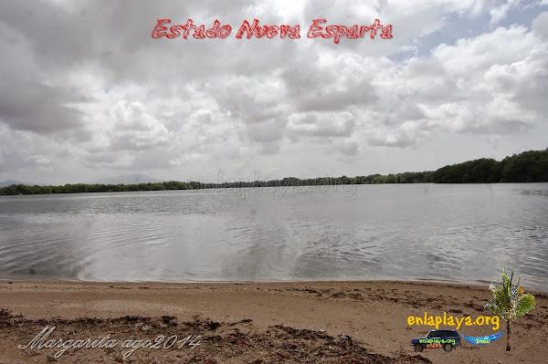 Playa Laguna La Raya NE121, Estado Nueva Esparta, Tubores