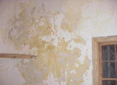 Aprender hacer bricolaje casero marzo 2011 - Manchas humedad pared ...