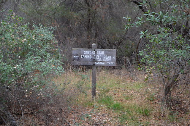 Snyder Trail