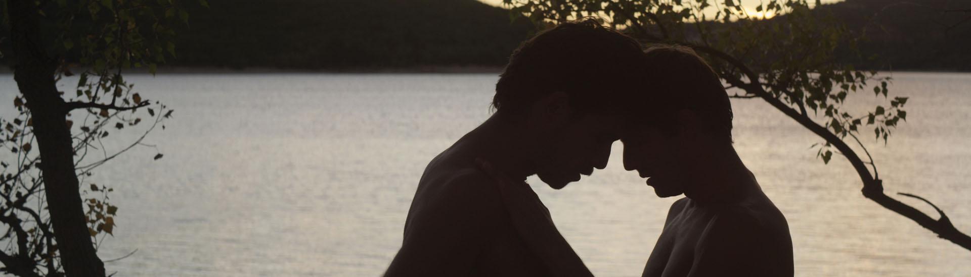 Baner filmu 'Nieznajomy Nad Jeziorem'