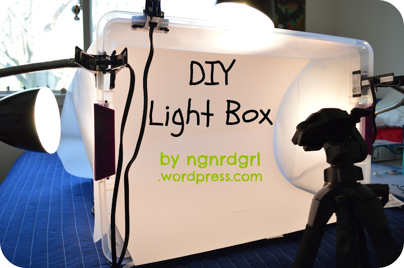 Upgrading My Photography with a DIY Light Box
