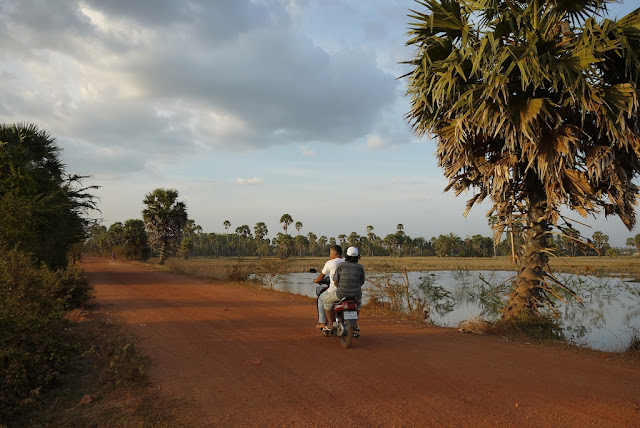 two people riding a motorbike on a dirt road next to a palm tree
