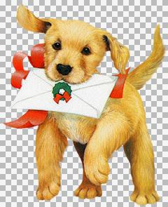 chili_ChristmasJoy1.jpg