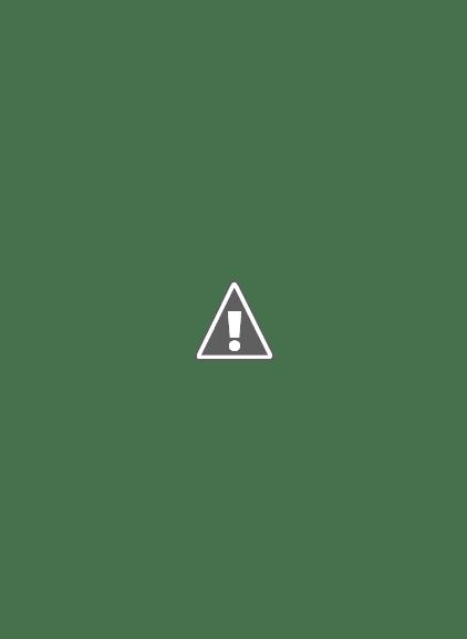 Latest Eid Mehndi Designs 2013