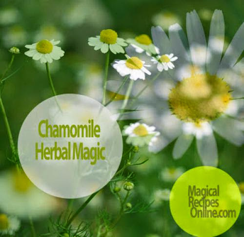 Herb Analysis Chamomile The Earth Apple