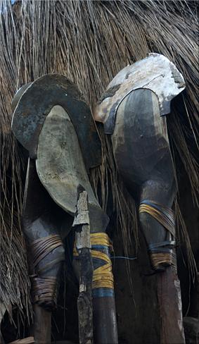 Curiosas 'azadas' para trabajos en el arrozal