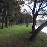 winding through the park (76600)