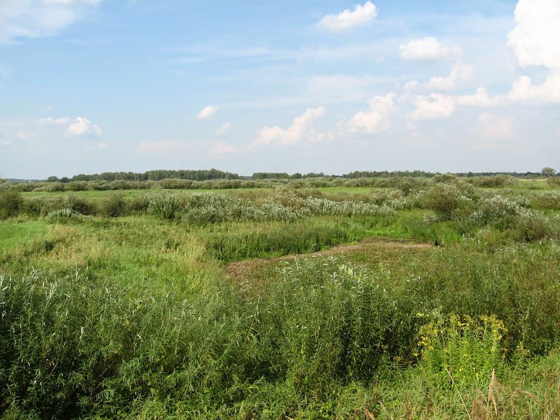 droga na Górę Strękową, Wizna, Podlasie