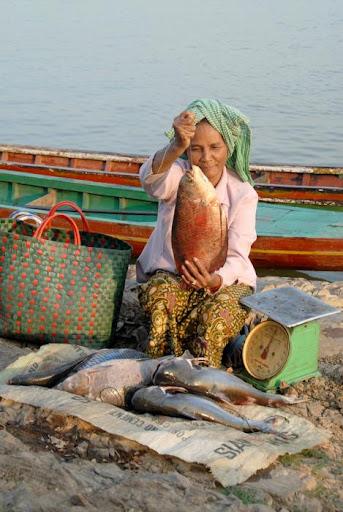 Cambodia fish seller
