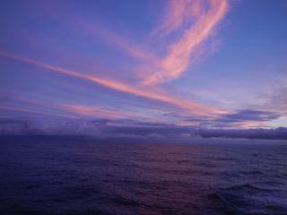 DSCN5359-2012-11-15-04-53.jpg