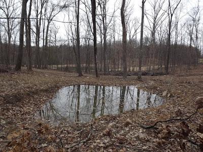 Considering tiered pond design renovating a pond or lake for Design of settlement ponds