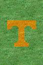 Tennessee%252520Volunteers%252520Grass.jpg