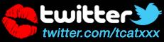 T-CatXXX no Twitter / T-CatXXX on Twitter
