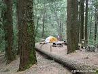 Campsite next to Park HQ
