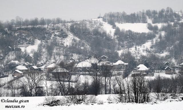 un sat romanesc - Tehomir, Gorj