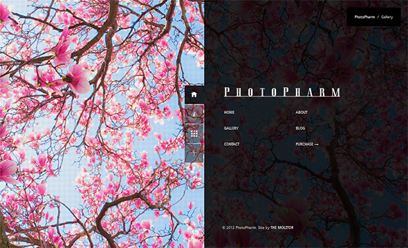 Photopharm Portfolio Theme for Photographers
