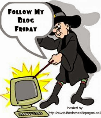 Follow Friday 5