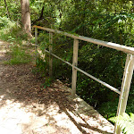 Crossing Rudder Creek (392585)