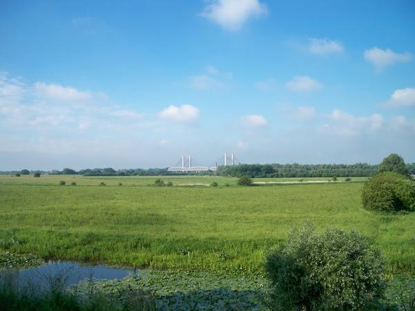 Nuit de Betuwe (NL); 110km ou 80km: 8-9/06/2012 100_6934